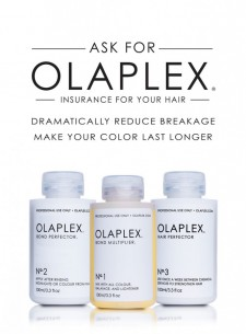 olaplaex treatment system